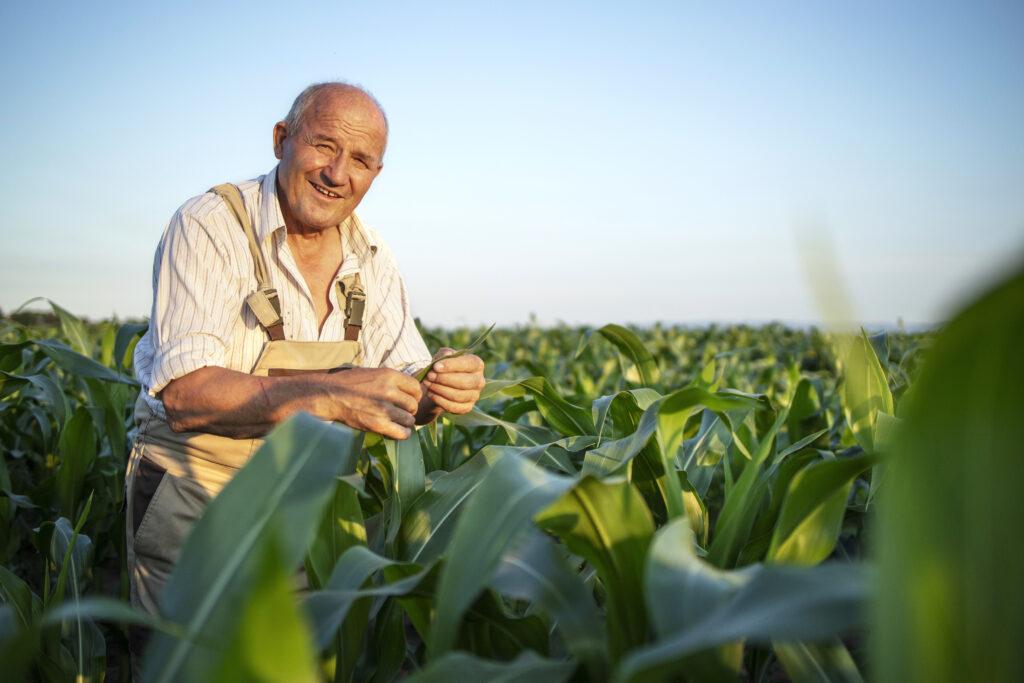 aposentadoria rural!
